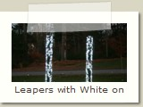 Leapers with White on