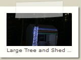 Large Tree and Shed Lighted