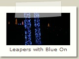 Leapers with Blue On