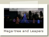 Mega-tree and Leapers